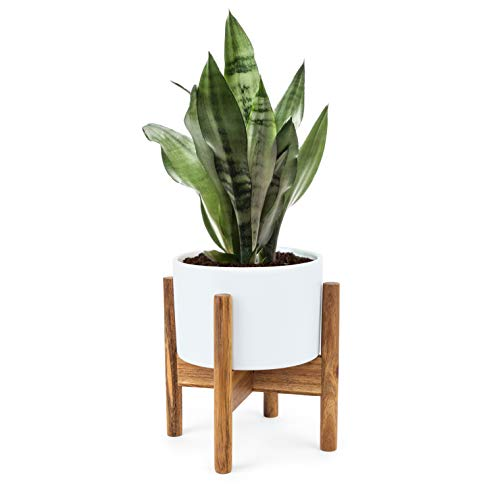 Small Indoor Tabletop Planter. 5 Inch Mid-Century Succulent Ceramic Plant Pot with Wood Stand and Drainage Hole by Fyra Ben. Modern Desktop Holder for Cactus Flower Candle (Included Planter and Stand)