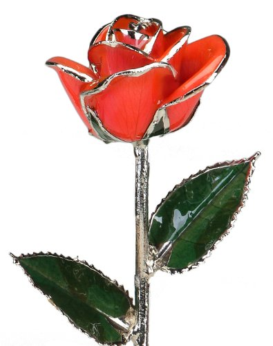 Real Rose Dipped in Platinum (Bright Red)
