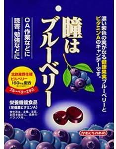 川口製菓 瞳はブルーベリー 100g×12袋