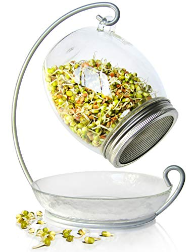 (Premium Sprouting Kit Includes Unique 30 oz Wide Mouth Sprouting Jar, Stand, Tray and Sprouting Lid | Decorative Indoor Seed Sprouter and Germinator (1 Kit))