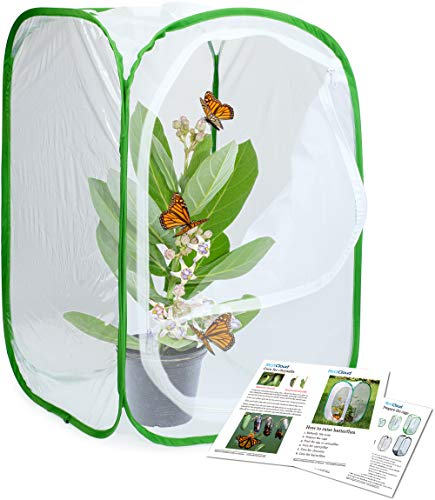 - RESTCLOUD Insect and Butterfly Habitat Cage Terrarium Pop-up 23.6 Inches Tall