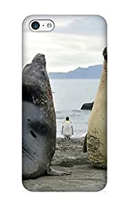 Appearance Snap-on Case Designed For Iphone 5c- Animal Seal(best Gifts For Lovers)