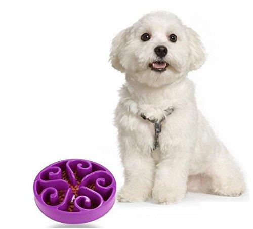 Komener Puzzle Cuenco Lento Alimento Antiestrés que evita que la mascota se hinche - Morado