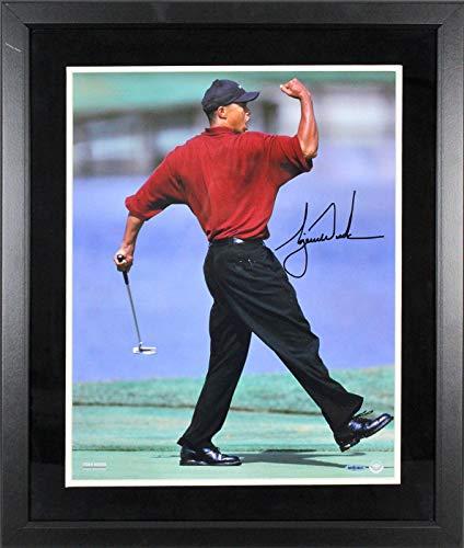 - Signed Woods Photo - & Framed 16x20 Fist Pump #BAM02026 - Upper Deck Certified - Autographed Golf Photos