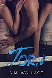 Torn (Divided, #1)