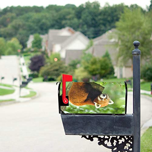 THKDSC Beautiful Cute Red Panda Animal Mailbox Covers Standard Size Original Magnetic Mail Cover Letter Post Box 21