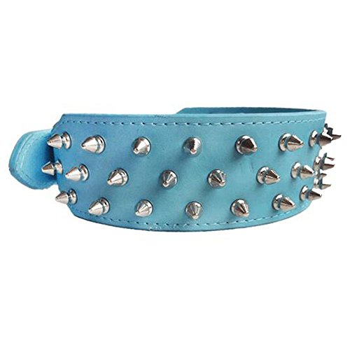 Avenpets Walking Leather Dog Collar with Nickel Plated Spikes Pitbull Bull Terrier Collar,Blue,L:(neck 21-24