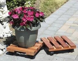 Novelty 80658 Rjr Jr Organic Garden Kit Mix 6Pk Plt 6ea, (Plt Kit)