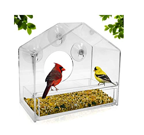 Feeder, Sliding Feed Tray, Large, Crystal Clear, Weatherproof Design, Squirrel Resistant, Drains Rain Water to Keep Bird Seed Dry! ()