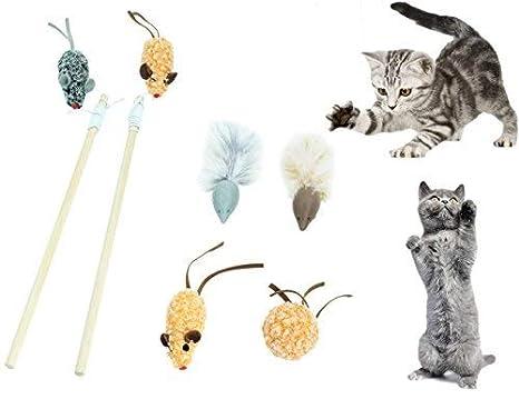 SCENEREAL CO. Juguetes interactivos para gatos, juego de 6 piezas ...