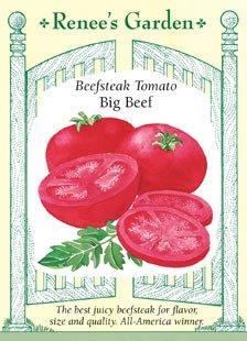 Big Beef (Tomato - Big Beef Seeds)
