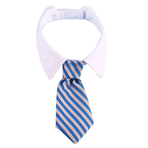 Nyan Cat Costume (Pets Dog Cat Stripe Bow Tie Neckties with White Collar, Adjustable Collar Bowtie for Wedding Party Accessories(Blue/Grey,Size L) (L, Blue/Grey))