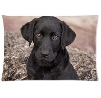 Black lab Labrador Retriever Dog Puppy Pet Zippered Pillow Cases Cover 20x30 Inch