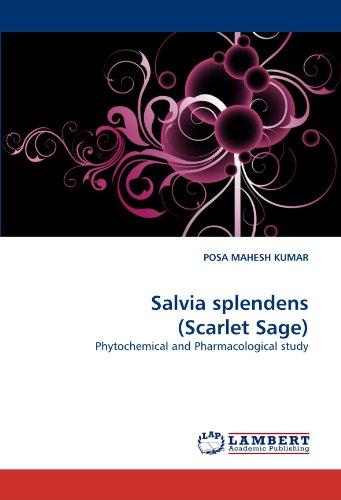 Salvia Scarlet Sage - Salvia splendens (Scarlet Sage): Phytochemical and Pharmacological study