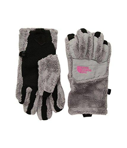 The North Face Girls' Denali Thermal Etip Glove - metallic silver/petticoat ()