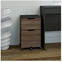 Latitude Run Darla 2 Drawer Mobile Vertical File Cabinet with Caster