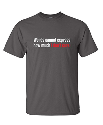 Words Cannot Express How Much I Don't Care Funny Sarcastic T-Shirt L Charcoal