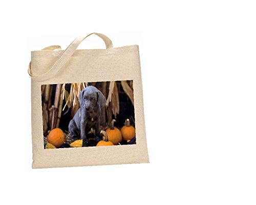 The Coton Sac Weimar Lazy 249 fc 100 Chien Cow fqWUfxOwrB