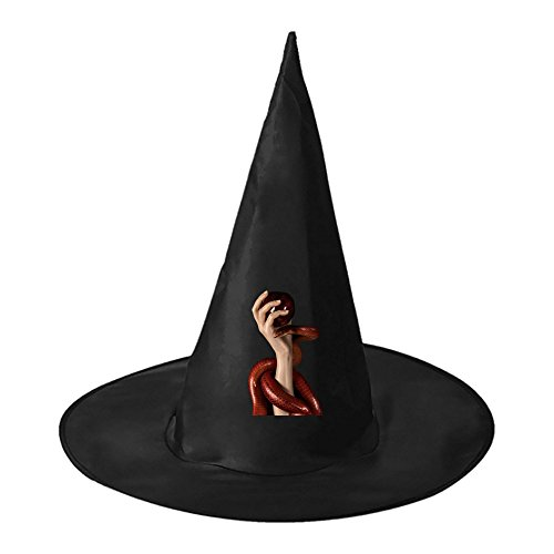 Poisoned Snake Halloween Witch Black Hat Party Cap Accessory for (Best Couples Halloween Costumes Homemade)