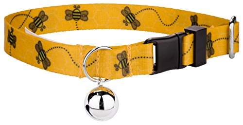 Country Brook Petz | Busy Bee Cat Collar