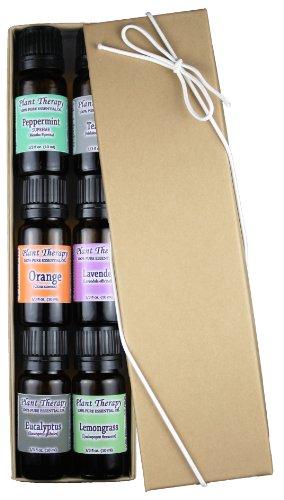 Top 6 Essential Set huile Sampler. Comprend 100% Pure, non dilué, catégorie thérapeutique huiles essentielles de lavande, d'eucalyptus, d'orange douce, menthe poivrée, citronnelle et d'arbre à thé. 10 ml chacun