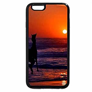 iPhone 6S / iPhone 6 Case (Black) Horse Surfing