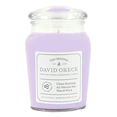 22oz Original Clean Burning Odor Eliminating Candle, 120 Hour Burn Time, Lilac by David Oreck Candle Company