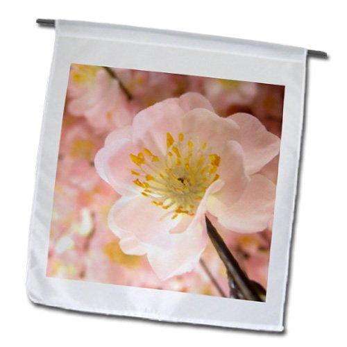 InspirationzStore Photography - Cherry Blossom flower macro close-up photo - Japanese pink tree floral with blurred background - 12 x 18 inch Garden Flag (fl_162578_1)
