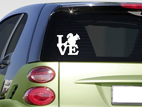- Squirrel love 6