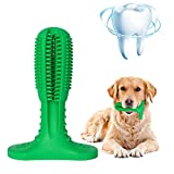 Quntion Dog Toothbrush Toy,Dog Dental Care Brushing Stick for Large and Small Breed,Indestructible