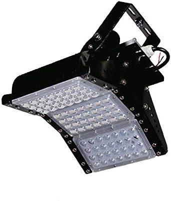LED planta–Foco de Luz 150W Tipo C Grow Light para cultivos y Invierno de flores, verduras y plantas verdes–Última Tecnología con espectro total ledes