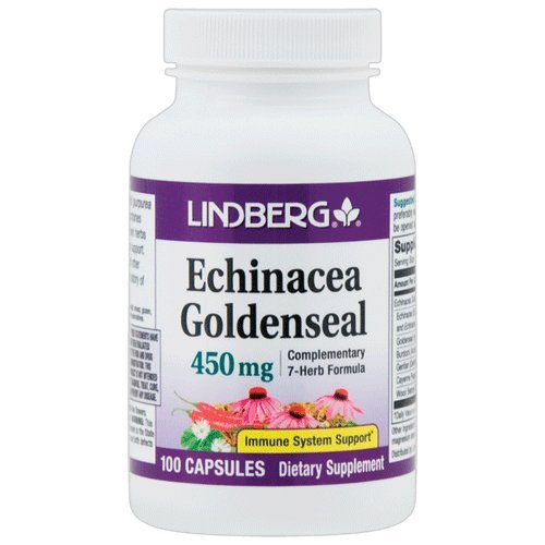 Echinacea Goldenseal 450 mg - Complementary 7-Herb Formula Including Echinacea Purpurea and Angustifolia, Goldenseal, Burdock, Gentian, Cayenne and Wood Betony – 100 Capsules