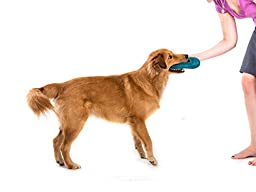 West Paw Design Zogoflex Air Dash Flying Disc Dog Play Toy, Large, Peacock