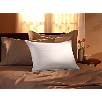 Amazon Com 75 25 Down And Feather Super Soft Pillow