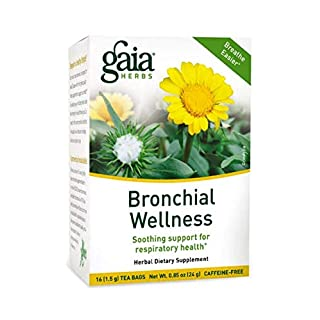 Gaia Herbs Bronchial Wellness Herbal Tea, 16 Tea Bags - Soothing Support, Promotes Respiratory Health, Caffeine Free (Packaging may vary)