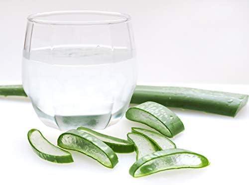 BIO Jugo de Aloe Vera 1l. Ecológico. Aloe Vera 100% Español (Huelva). Botella de vidrio. Con Pulpa