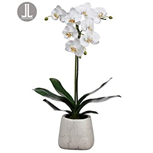 "30"" Handwrapped Phalaenopsis Orchid Silk Flower Arrangement -White 67"