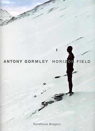 Antony Gormley: Horizon Field