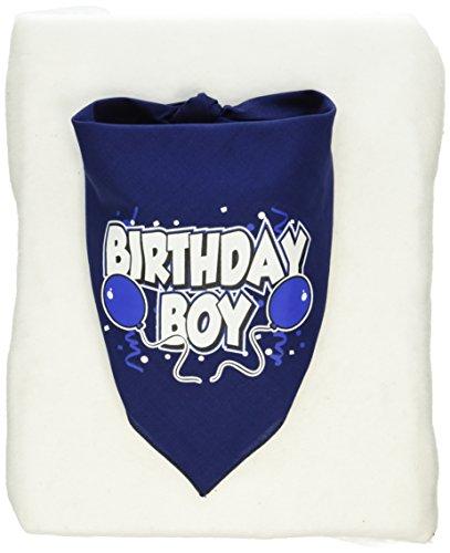 Mirage Pet Products Birthday Boy Screen Print Bandana for Pets, Small, Navy (Navy Blue Pet Jersey)