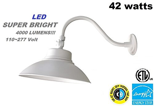Led Mesh Accent Lights - 8