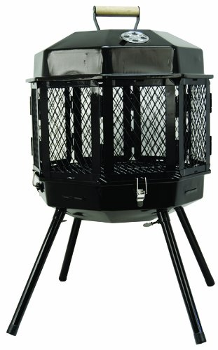 (Masterbuilt GMFP20 Grizzly Cub Portable Fireplace and Grill)