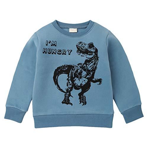 Girl's Sweatshirt met Lange Mouwen Tops, Dinosaur Druk Trui Plush Jacket Jas voor De Gift Van