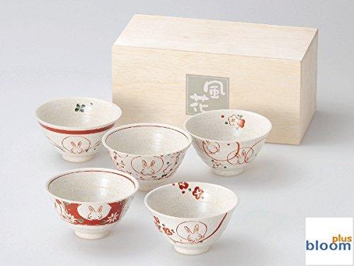 Akae Rabbit Rabbit Rice Bowl Alloy Pottery Mino