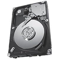 Seagate Savvio 15K.3 ST9300653SS 300 GB 2.5 Internal Hard Drive