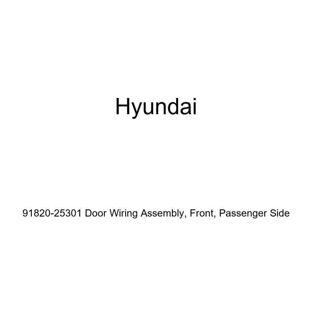 Passenger Side Front Genuine Hyundai 91820-25301 Door Wiring Assembly