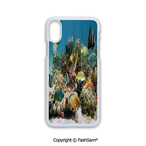 (Phone Case Compatible with iPhone X Black Edge Colorful Coral Colony on Reef Beautiful Shoal of Tropical Fish Caribbean Sea Picture 2D Print Hard Plastic Phone Case )