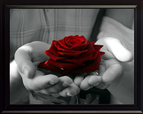 Red Rose Framed (Red Rose in Black and White Hands, Art 8x10 Framed Photo)