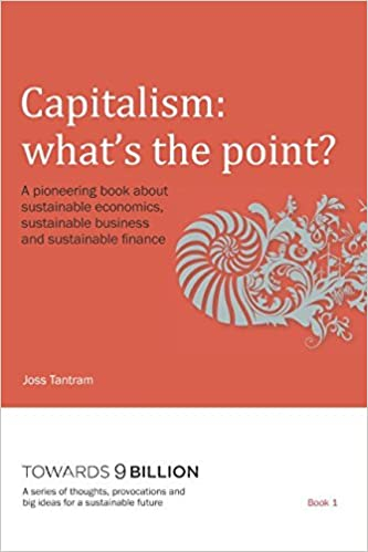 Capitalism: what's the point?: A pioneering book about sustainable economics, sustainable business and sustainable finance (Towards 9 Billion)