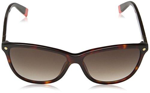 polarisé VG Designer papillon Mode Femme Lunettes de soleil Compatible pour conduite COMPLET UV400 Protection GRATUIT vibranthut microfibre poche inclus - Noir Tortue BRAS / OR / verre noir, One Size