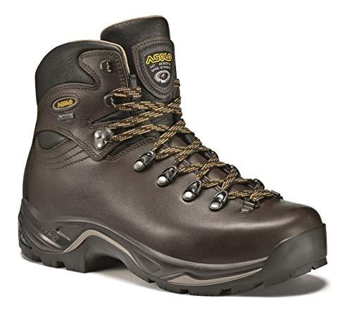 Asolo Men's  TPS 520 GV Boot, Chestnut - 7.5 B(M) US